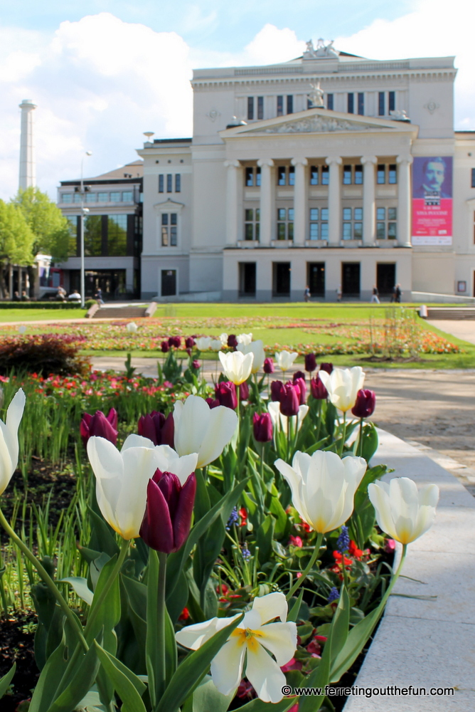 Tulips bloom in front of the Latvian National Opera House in Riga